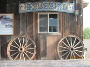 Bluebird Inn 2